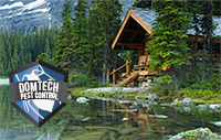 Domtech Pest Control will service your cottage with the same professional service we use for your home.